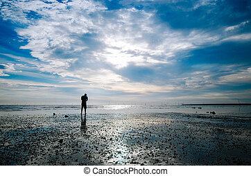 reputacja, plaża, sylwetka, człowiek