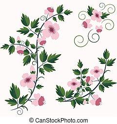 retro kwiecie, tło, kwiatowy, wektor
