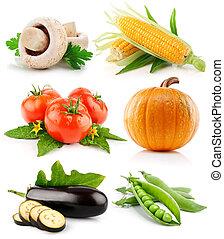 roślina, biały, komplet, odizolowany, owoce