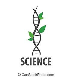 roślina, dna, kształt, liście, wektor, logo
