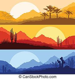 rośliny, natura, drzewo, dłoń, dziki, kaktus, krajobrazy, pustynia