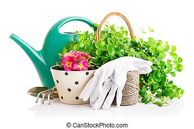 rośliny, ogrodnictwo, ogród, zielony, kwiaty, narzędzia