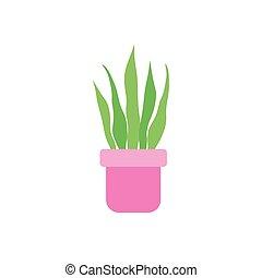 rośliny, płaski, ikona, doniczkowy, sansevieria