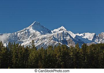 rockies, snowcapped, kanadyjczyk