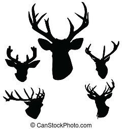 rogi jelenie, jeleń, sylwetka