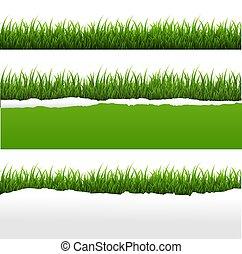 rozerwał, komplet, papier, zielone tło, biały, trawa