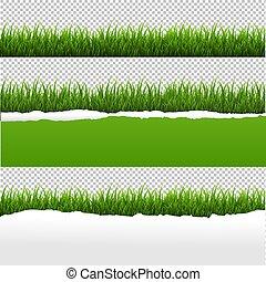 rozerwał, papier, zielone tło, trawa, przeźroczysty