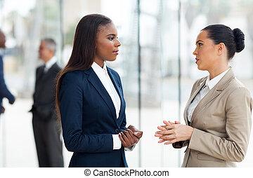 rozmowa, koledzy, samica, biuro, posiadanie