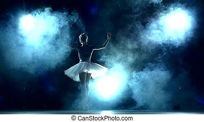 ruch, łania, balerina, powolny, trening, klasa