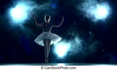 ruch, balerina, blue., klasa, trening, powolny