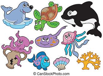 ryby, morskie zwierzęta, zbiór