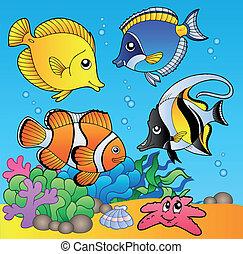ryby, podwodny, 2, zwierzęta