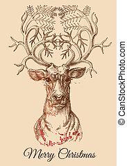 rys, wektor, jeleń, boże narodzenie, ilustracja