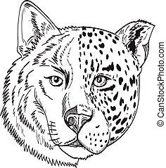 rysunek, jaguar, lampart, pół, głowa, biały wilk, budulec, albo, pantera, czarnoskóry