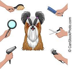 rysunek, oporządzając wystawiany, zbiór, pies