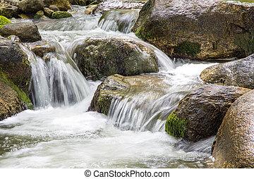 rzeka krajobraz, drzewa, natura