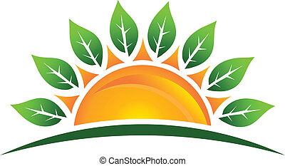 słońce, liście, wizerunek, logo