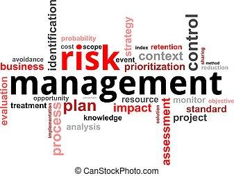 słowo, kierownictwo, -, ryzyko, chmura