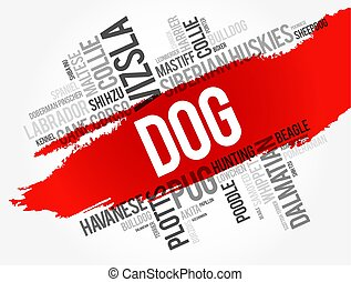 słowo, spis, pies, najbardziej, ludowy, chmura, dziedziczy się