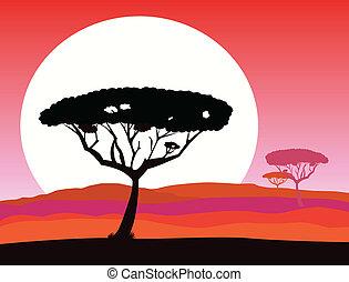safari, tło, afrykanin