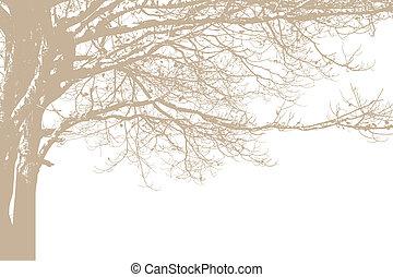 sam, wektor, drzewo, silhouette.