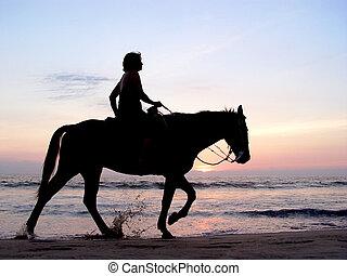 samotny, zachód słońca, jeździec