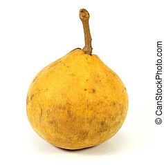 santol, owoc, tło, biały