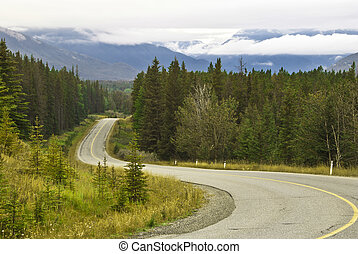 sceniczny, narodowy park, jazda, banff