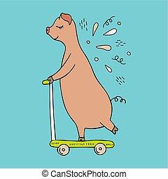 scooter., ilustracja, świnia, hand-drawn, wektor, jeżdżenie, doodles.