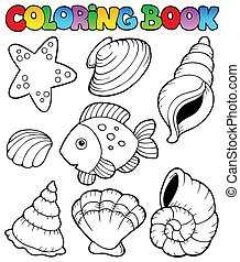 seashells, koloryt książka