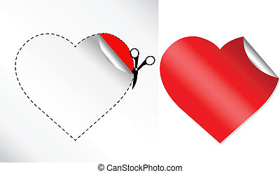 serca, rzeźnik, kształt