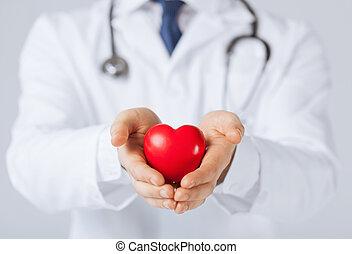 serce, człowiek, siła robocza