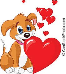 serce, dzierżawa, szczeniak, czerwony, jej, m