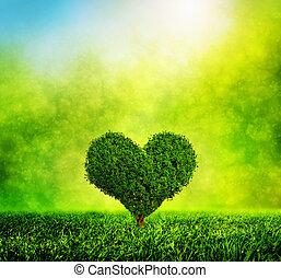 serce postało, natura, miłość, drzewo, środowisko, grass., zielony, rozwój