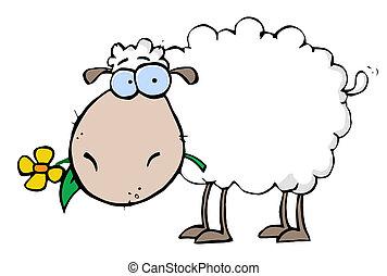 sheep, kwiat, usta