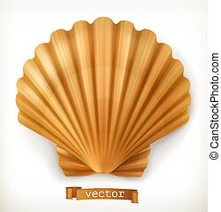 shell., wektor, 3d, ikona