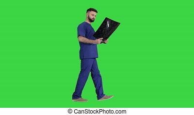 skandować, badając, mri, znowu, zielony, ekran, pieszy, mózg, chroma, key., chirurg