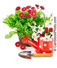 skoczcie kwiecie, narzędzia, ogród