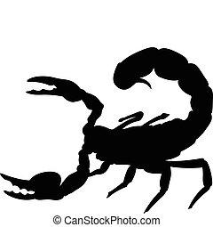 skorpion, sylwetka, wektor