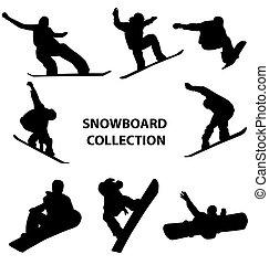 snowboard, sylwetka, zbiór