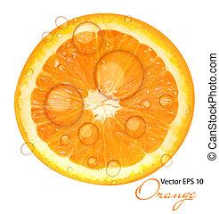 soczysty, ilustracja, wektor, tło, pomarańcza, świeży