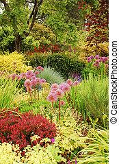 soczysty, ogród