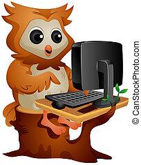 sowa, komputer