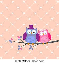 sowy, miłość, para