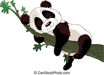 spanie, panda, gałąź