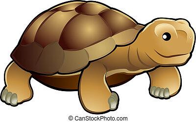 sprytny, żółw, ilustracja, wektor