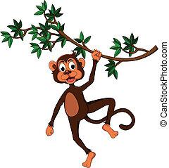 sprytny, drzewo, małpa