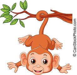 sprytny, hangin, drzewo, małpa
