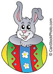 sprytny, jajko, królik, wielkanoc, przyczajony
