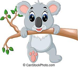 sprytny, koala, rysunek